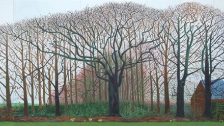 hockney bigger trees near warter