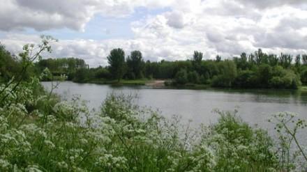 View across lake at Chorlton Water Park