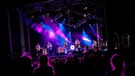 Ramsbottom Festival pic