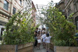 Best-in-Show-and-Gold-medal-Hulme-Community-Garden-Centre's-edible-tunnel