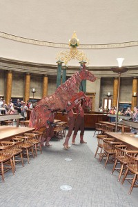 Joey at Central Library