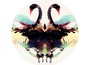 Swanhunter