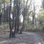 Humber Bridge Country Park