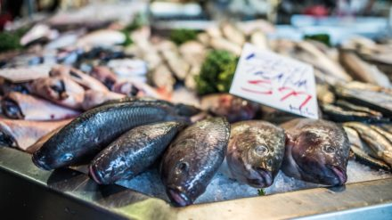 Fish stalls at Bury Market by Chris Payne
