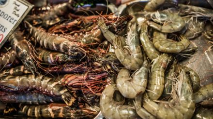 Prawns, Bury Market by Chris Payne