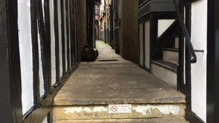 Historical ginnel, Chester, Jan Green