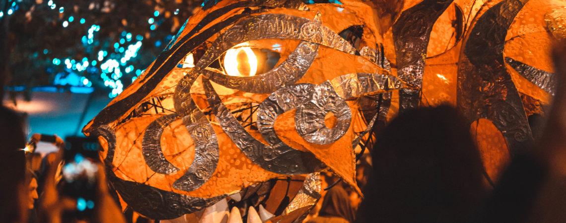 12th annual Dashehra Diwali Mela, James Lynd22