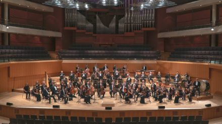 Halle - Credit The Halle Orchestra