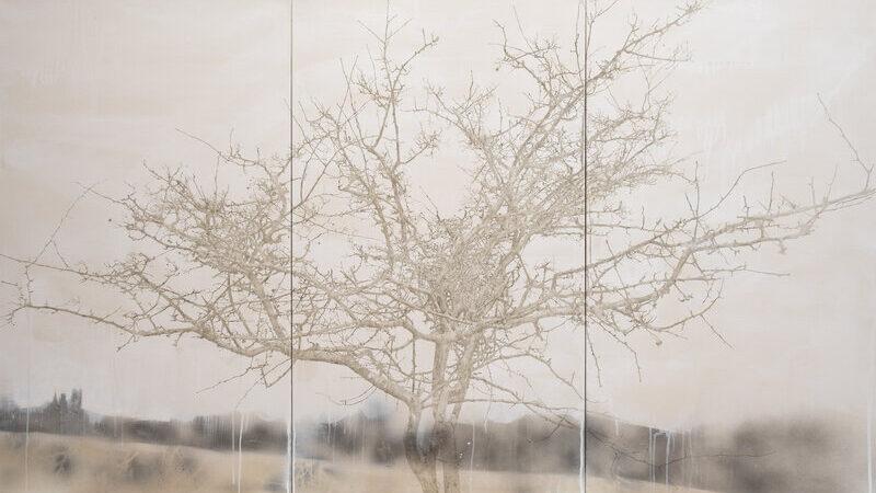 Melanie Goemans Hawthorn (triptych)