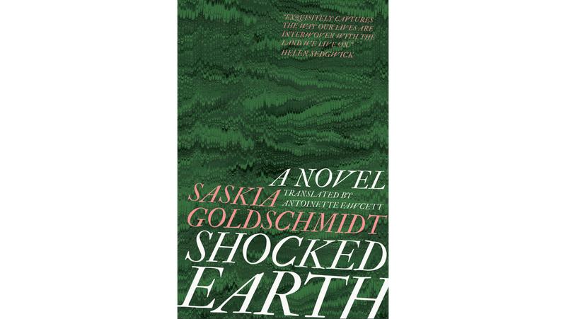Shocked Earth