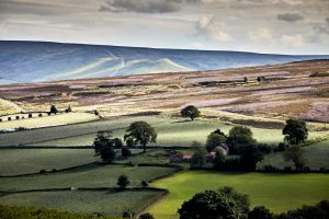 Commondale, North York Moors National Park by Paul Hunter