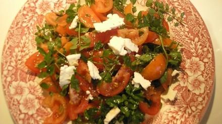 Bitter Cress Salad