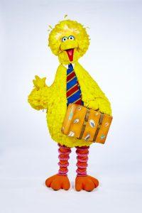 Big Bird. Photo: BBC/Jon Shard