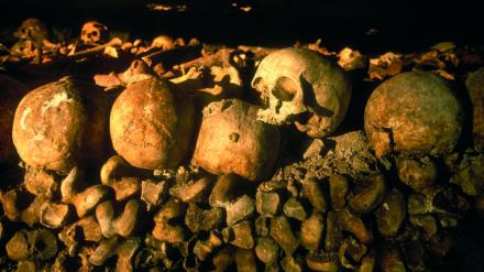 Les Catacombes, Parisinfo.com