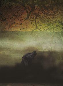 Lowry Black Dog