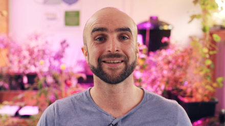 Andrew McConville