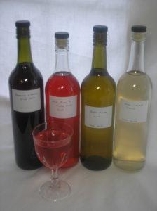 Wine making, Claire Fleetneedle