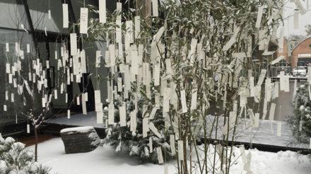 Yoko-Ono-Wish-Trees-for-Beijing-1996-2015-Installation-view-at-Faurschou-Foundation-Beijing-Beijing-China-2015-Photo-Emma-Zhang