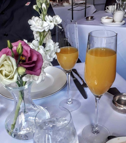 Mimosa at the Tea Room